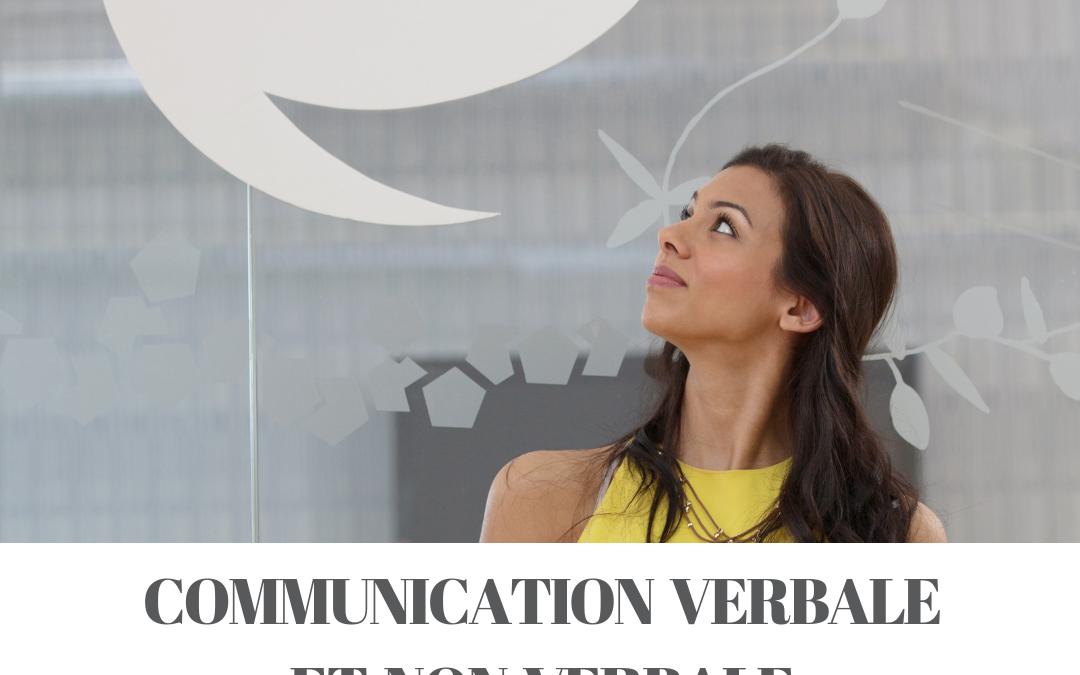 Communication verbale et non verbale – 1 jour